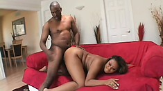 Slutty BBW goes face down and ass up for a big black schlong
