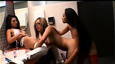 Young beauties play with their toys in a steaming hot lesbian threesome