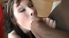 Rocco is in Prague getting a hot brunette to suck black and white cock