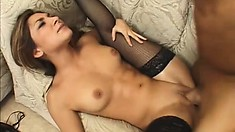 Bootylicious chick in stockings getting drilled like the whore she is